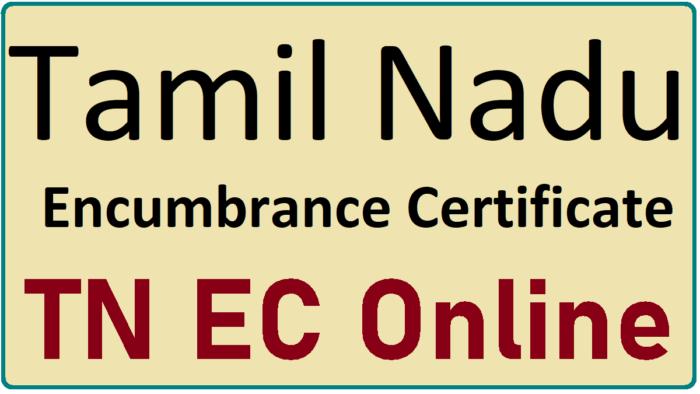 TN EC
